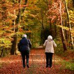 VR Apps for Senior Citizens